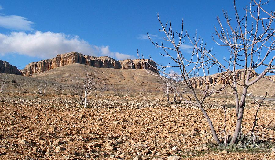 Qalamoun Photograph - Qalamoun Mountains by Issam Hajjar
