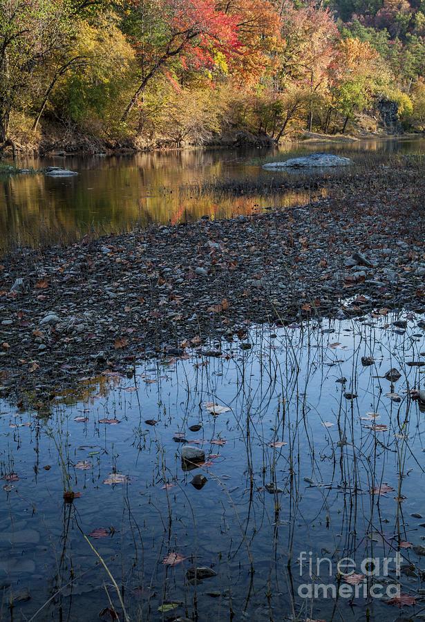 Quachita River Photograph