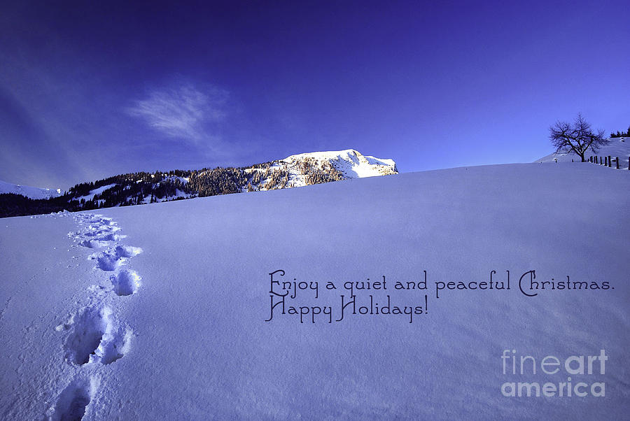 Quiet And Peaceful Christmas Photograph  - Quiet And Peaceful Christmas Fine Art Print