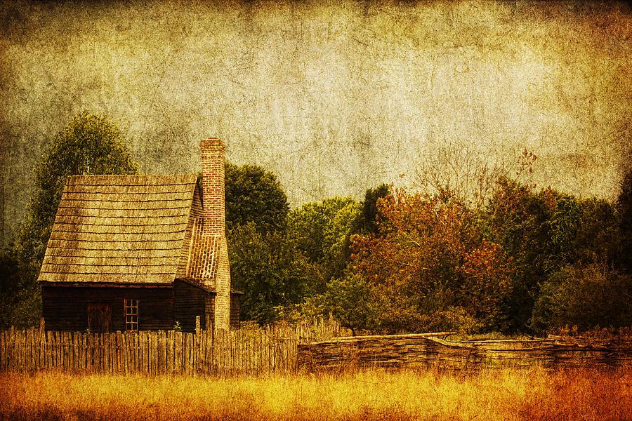 Farm Photograph - Quiet Life by Andrew Paranavitana