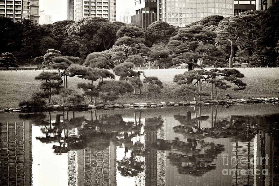 Quiet Moment In Tokyo Photograph