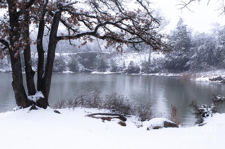 Quiet Moments In Winter Photograph