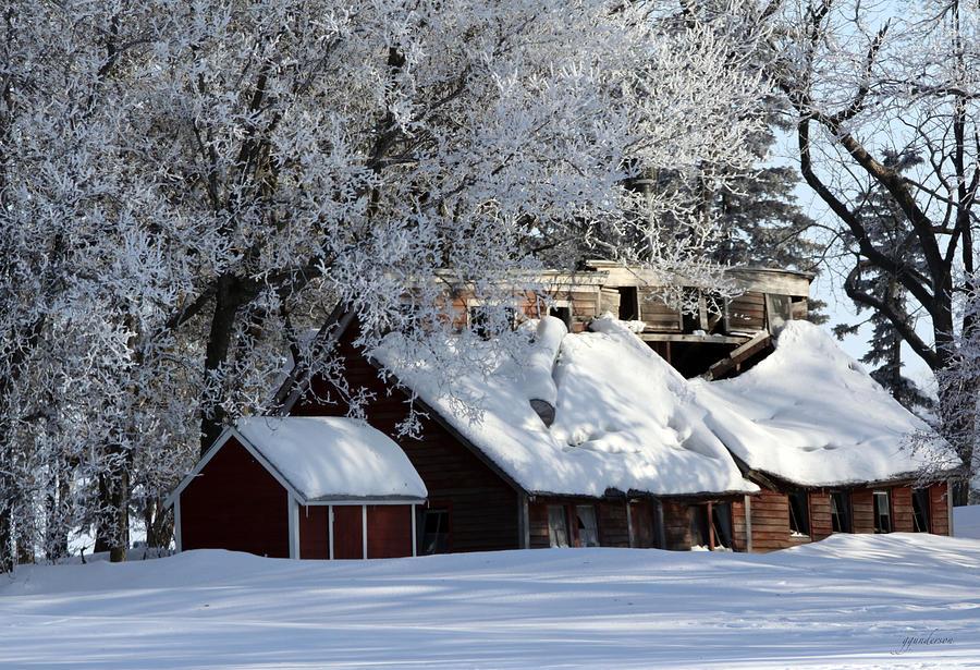 Quiet Snow Pyrography