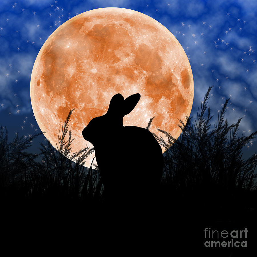 Rabbit Under The Harvest Moon Digital Art