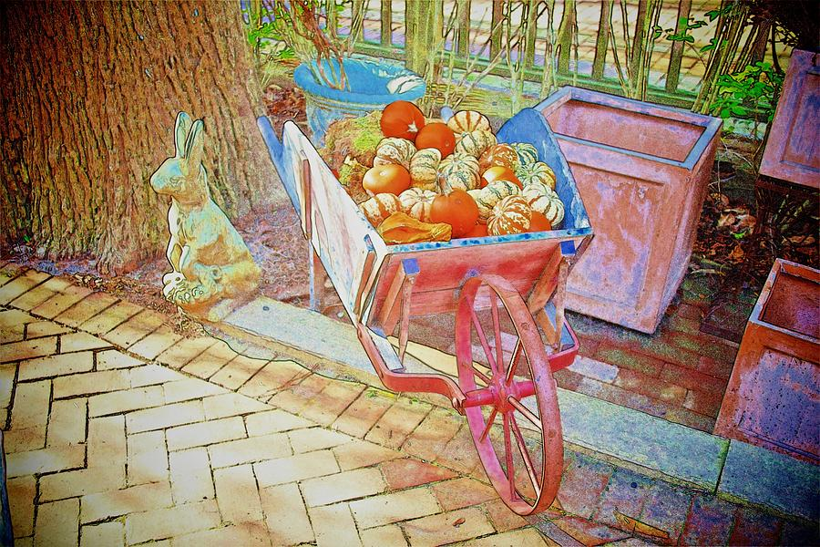 Rabbit With Pink Wheelbarrow Photograph  - Rabbit With Pink Wheelbarrow Fine Art Print