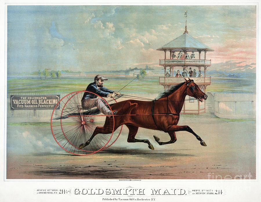 Racehorse: Goldsmith Maid Photograph