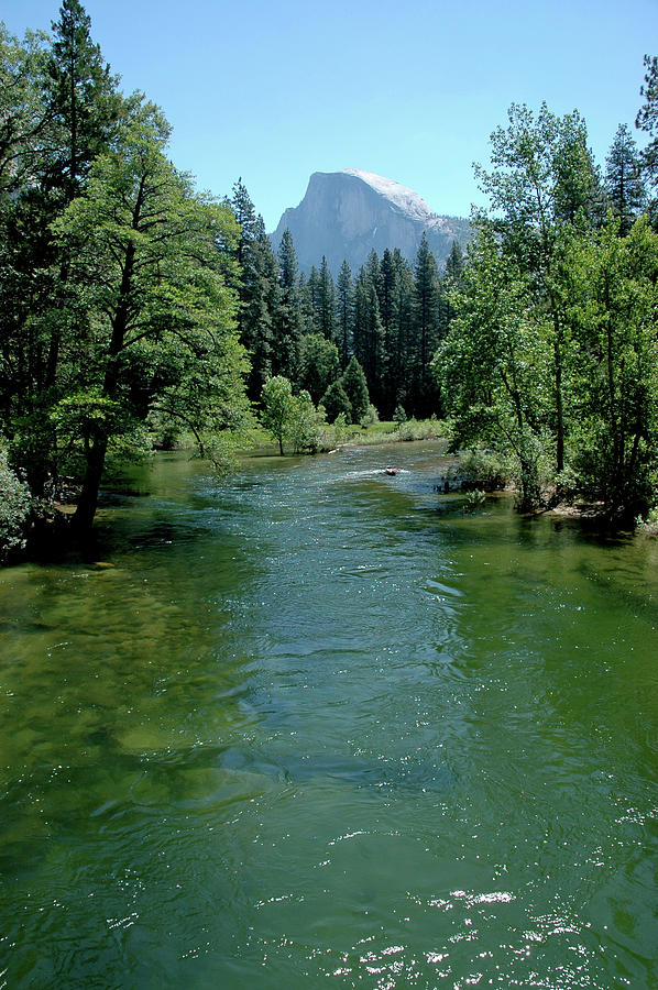 Rafting The Green Waters Of  Merced River Photograph