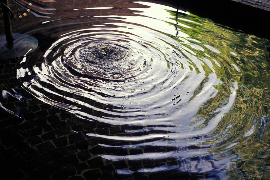 Rain Barrel Photograph