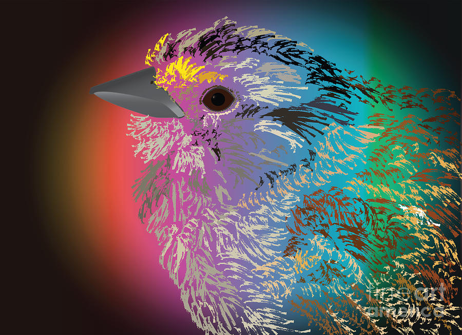 Rainbow Bird Digital Art  - Rainbow Bird Fine Art Print