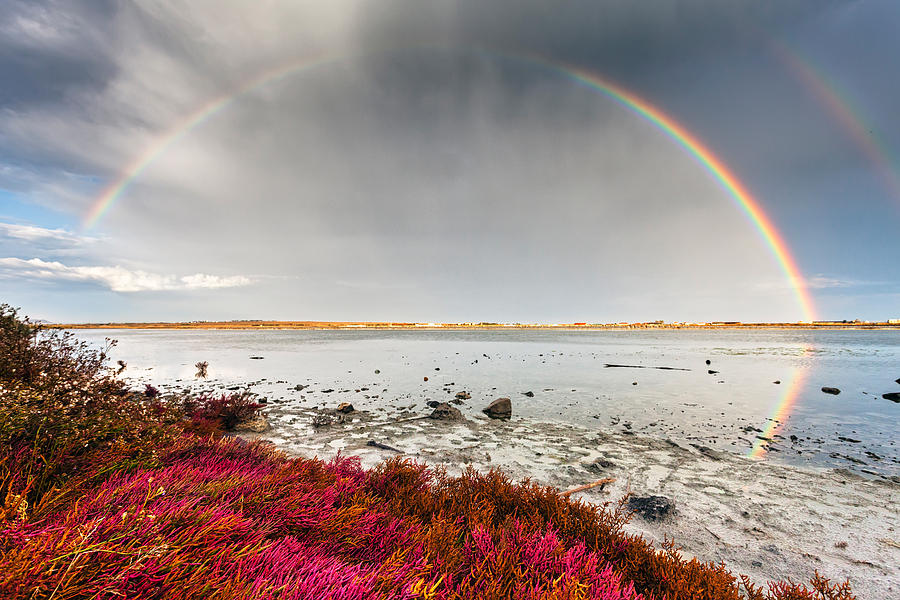Rainbow By The Lake Photograph