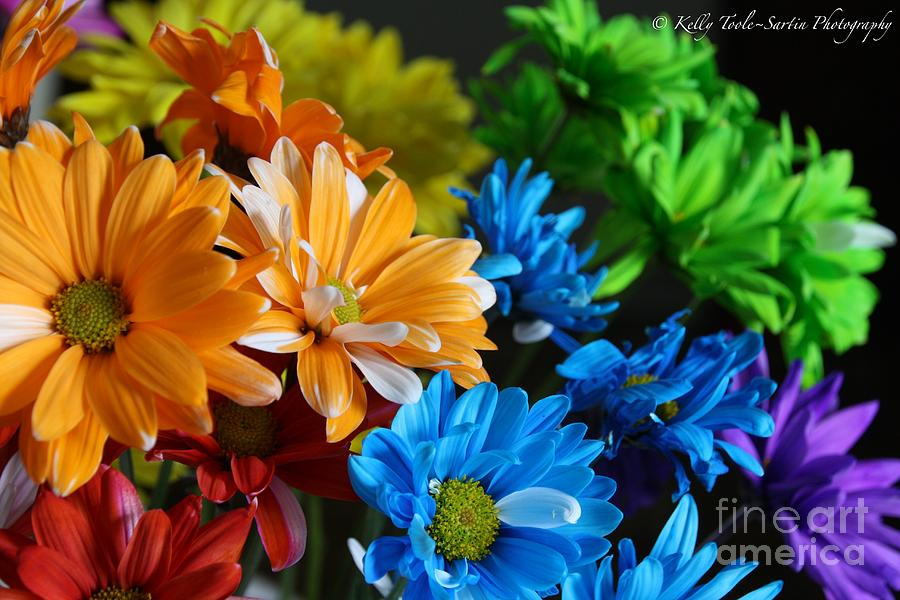 rainbow colored flowers by kelly toolesartin