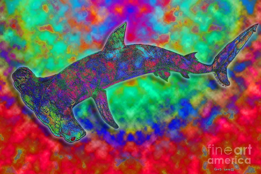 Rainbow Hammerhead Shark Drawing  - Rainbow Hammerhead Shark Fine Art Print