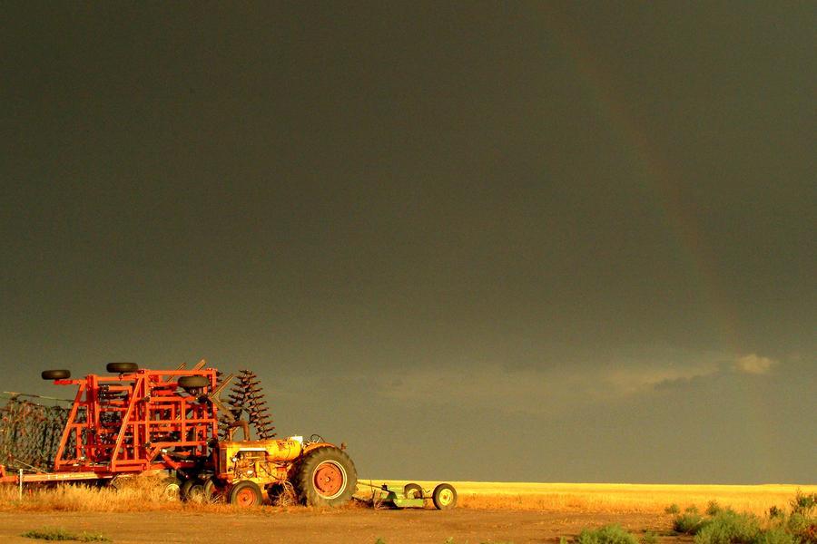 Rainbow Harvest.. Photograph