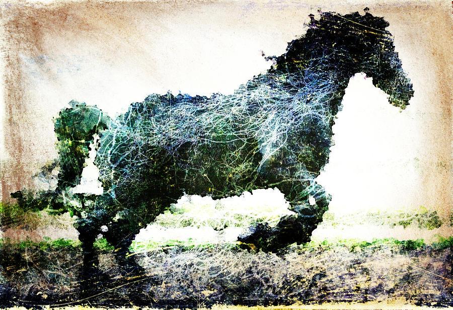 Rainbow Horse Digital Art