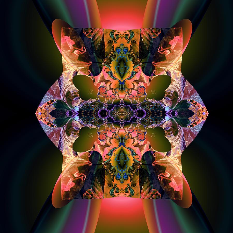 Rainbow Hydranga Abstraction Digital Art