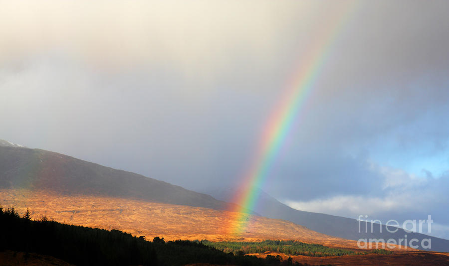 Rainbow In Scotland Photograph