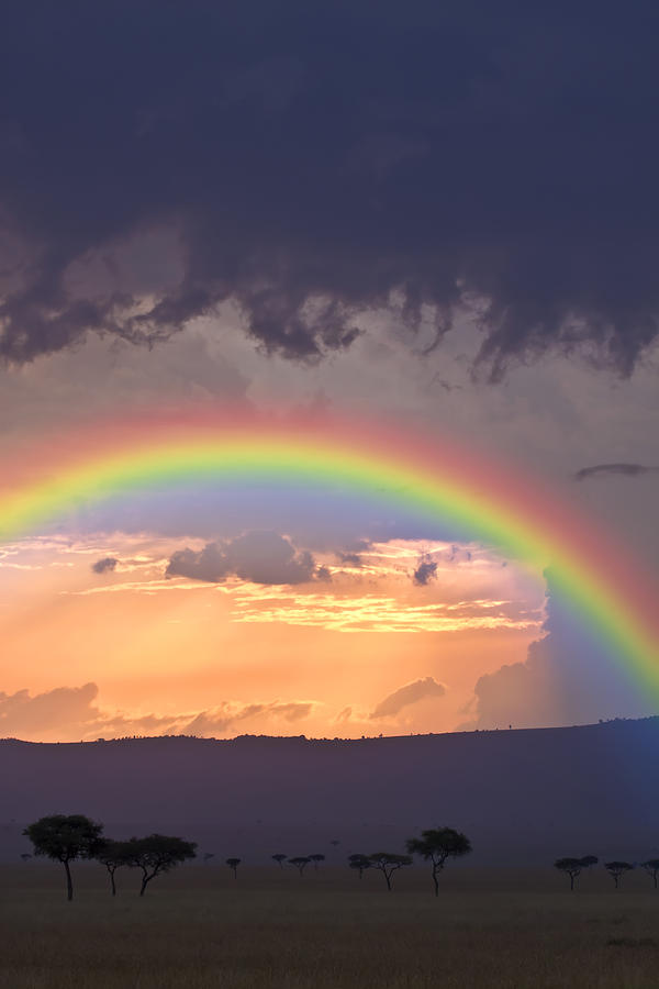 Rainbow Mara Photograph