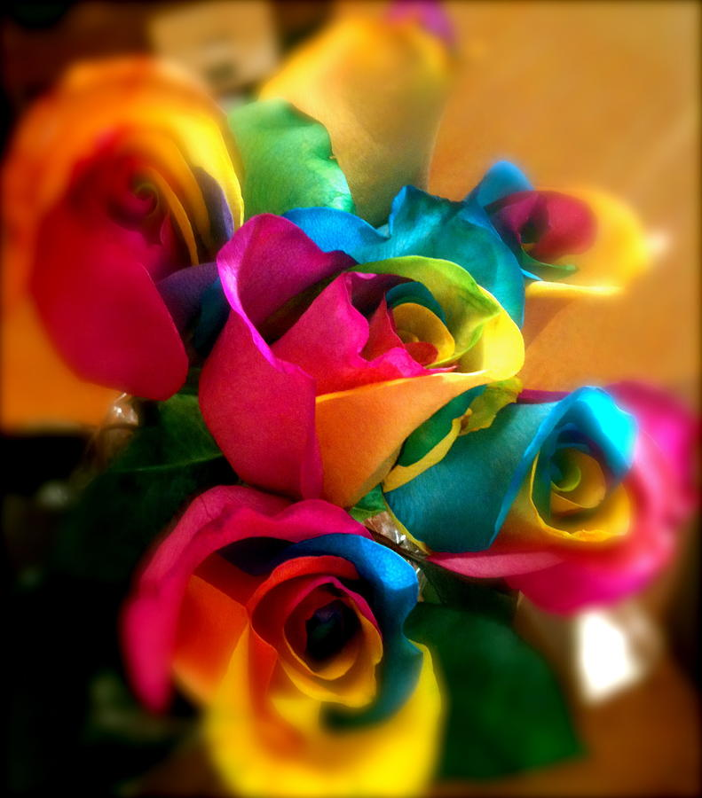 Rainbow roses by mia sanchez for Where to find rainbow roses
