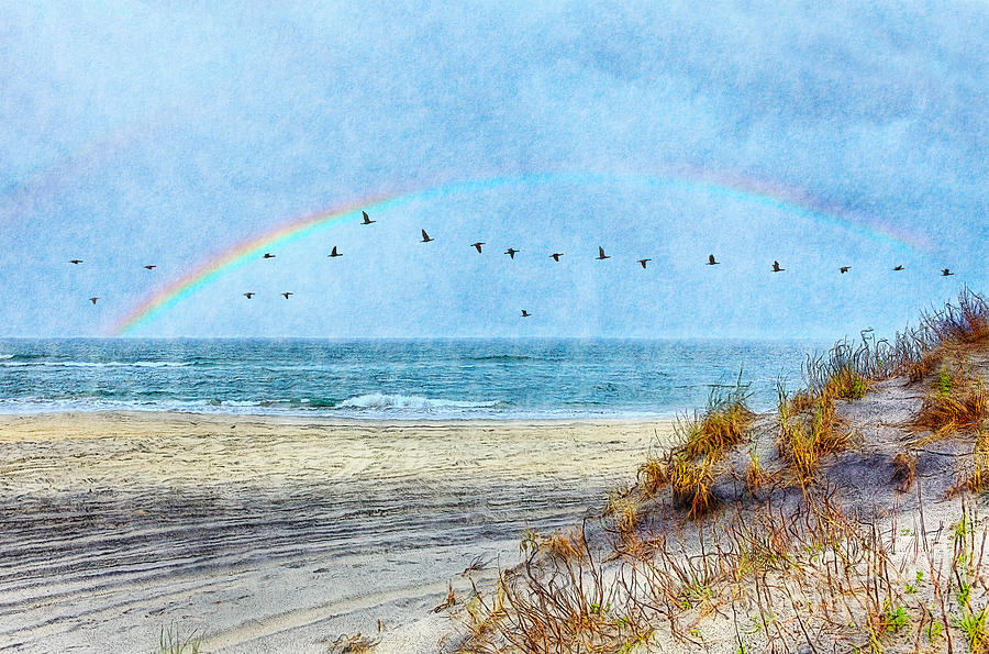 Rainbows And Wings II Painting
