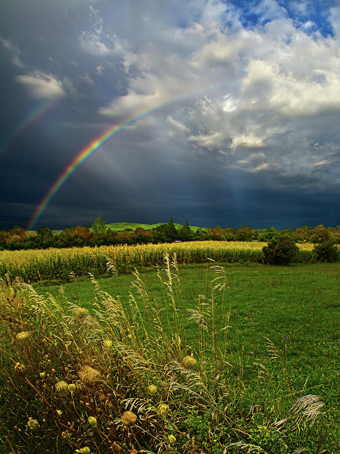 Rainbows Photograph  - Rainbows Fine Art Print