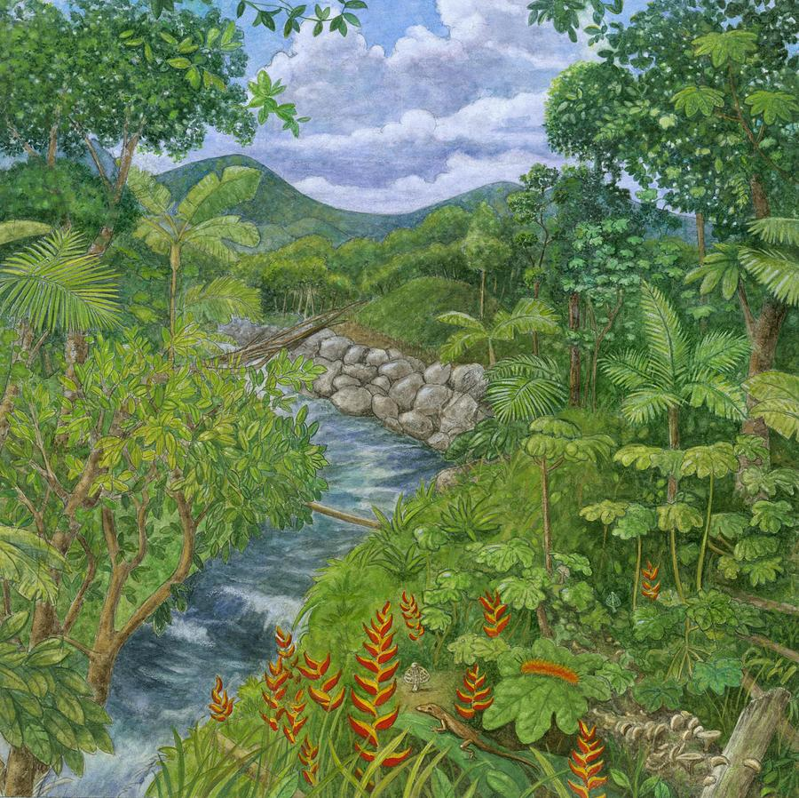 Rainforest At Full Bloom Painting