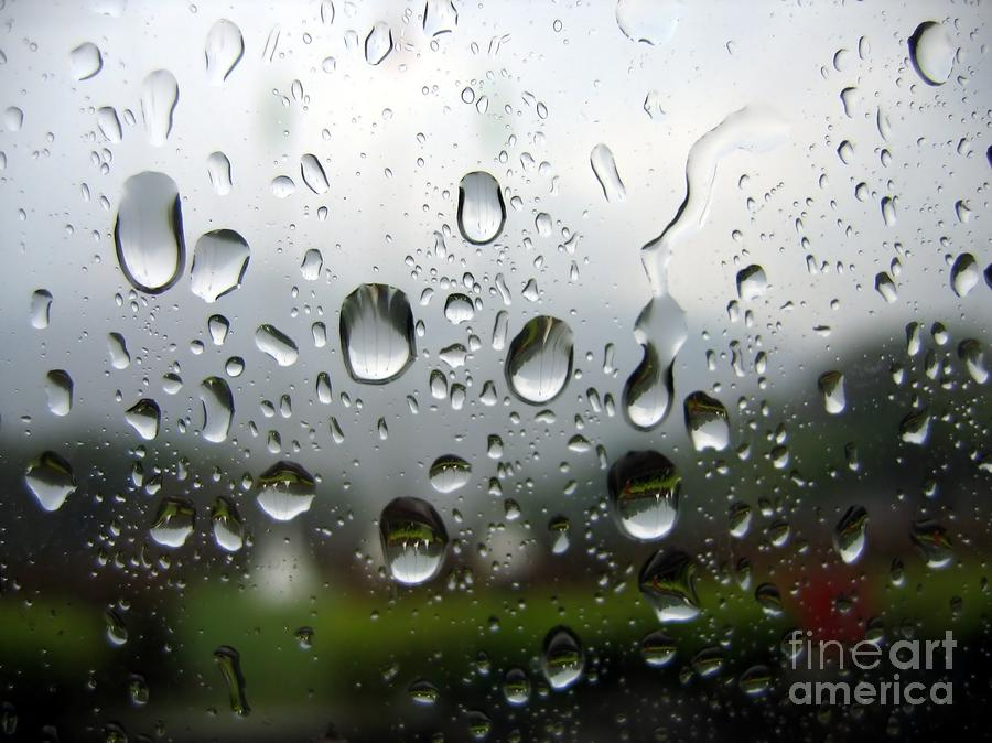 Rainy Day Photograph  - Rainy Day Fine Art Print