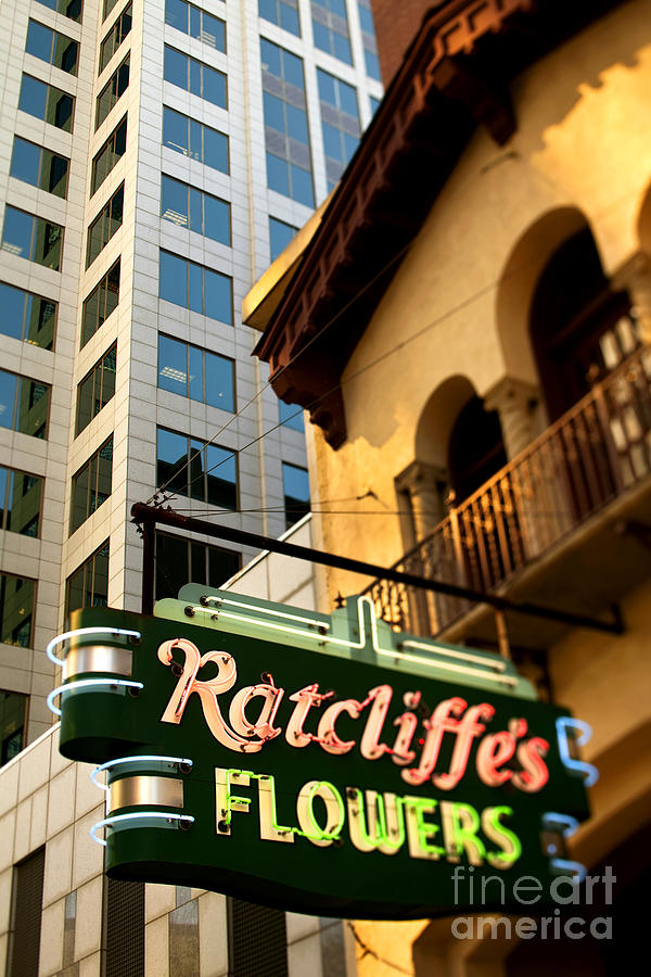 Ratcliffes Flowers Photograph  - Ratcliffes Flowers Fine Art Print