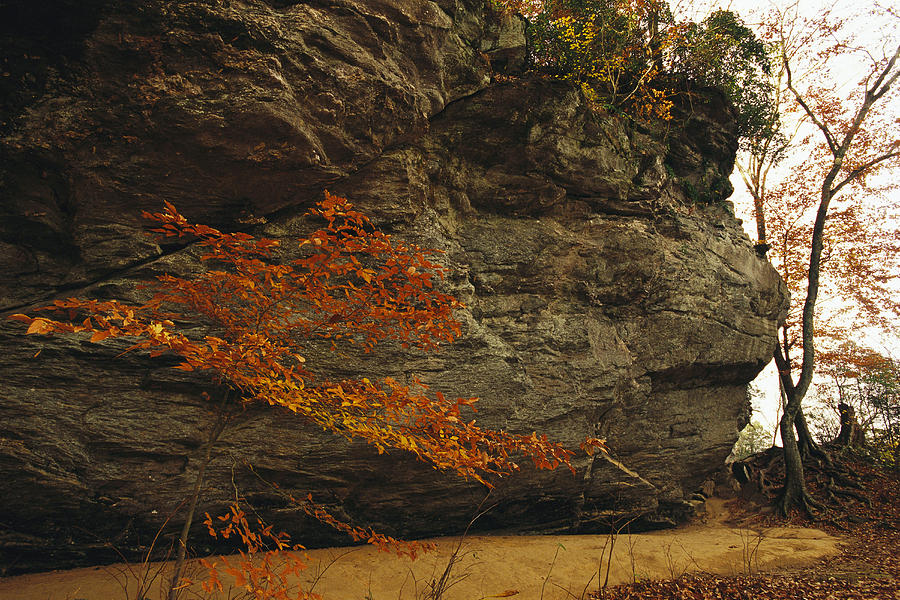 North America Photograph - Raven Rock, Trail, And Autumn Colored by Raymond Gehman