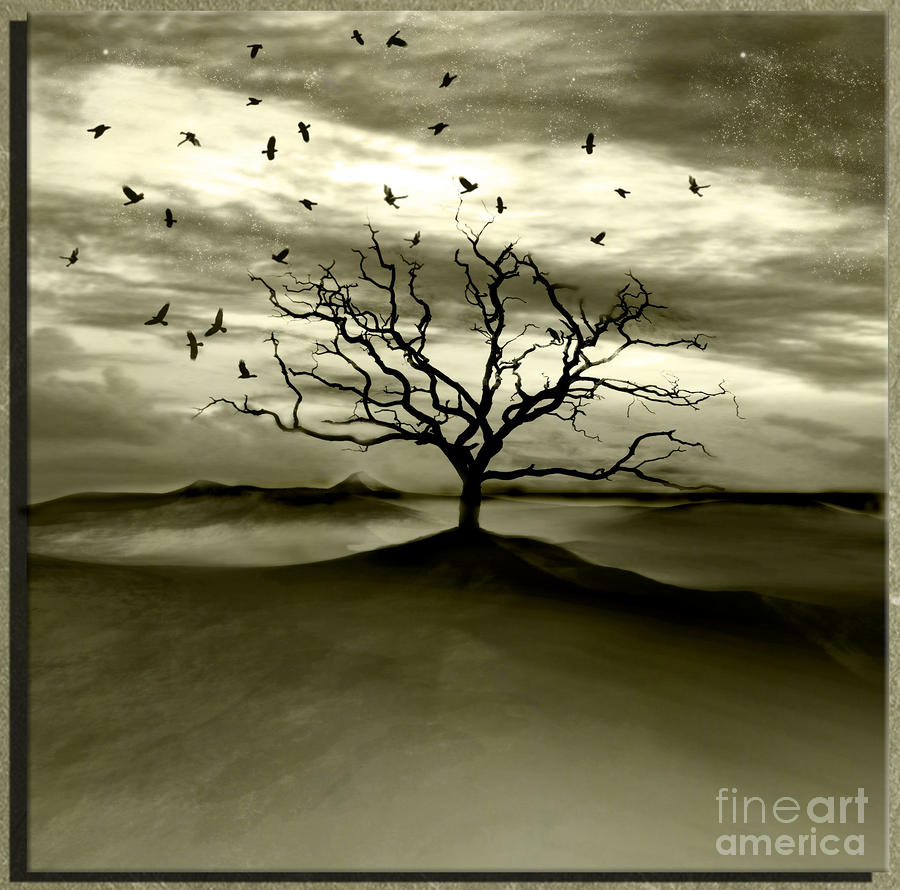 Raven Valley Photograph  - Raven Valley Fine Art Print