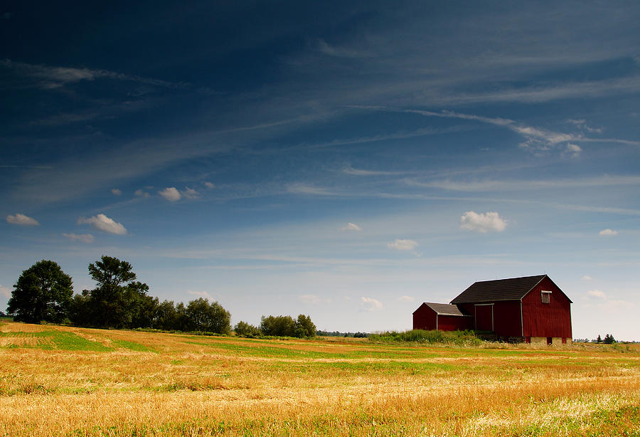 Barn Photograph - Red Barn by Cale Best