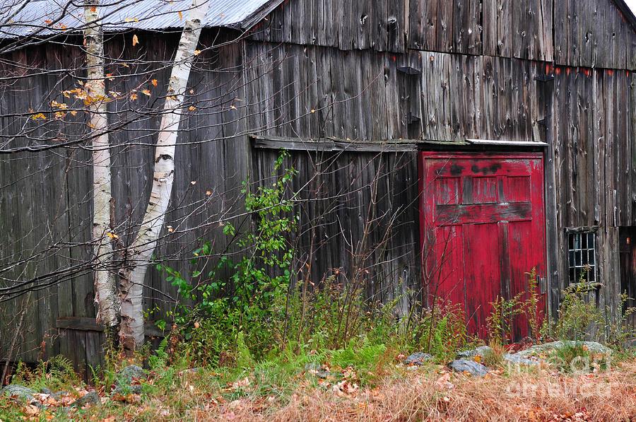 Red Barn Door - Dublin New Hampshire Photograph