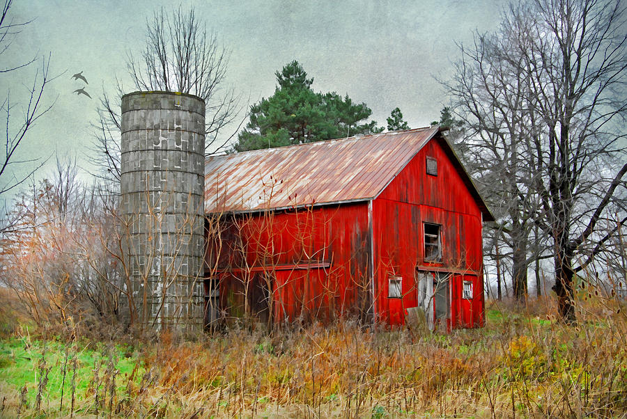 Ohio Red Barn Photograph - Red Barn by Mary Timman