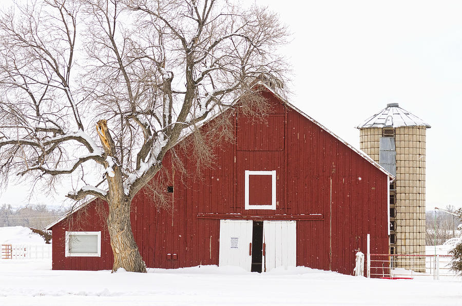 Red Barn Winter Country Landscape Photograph