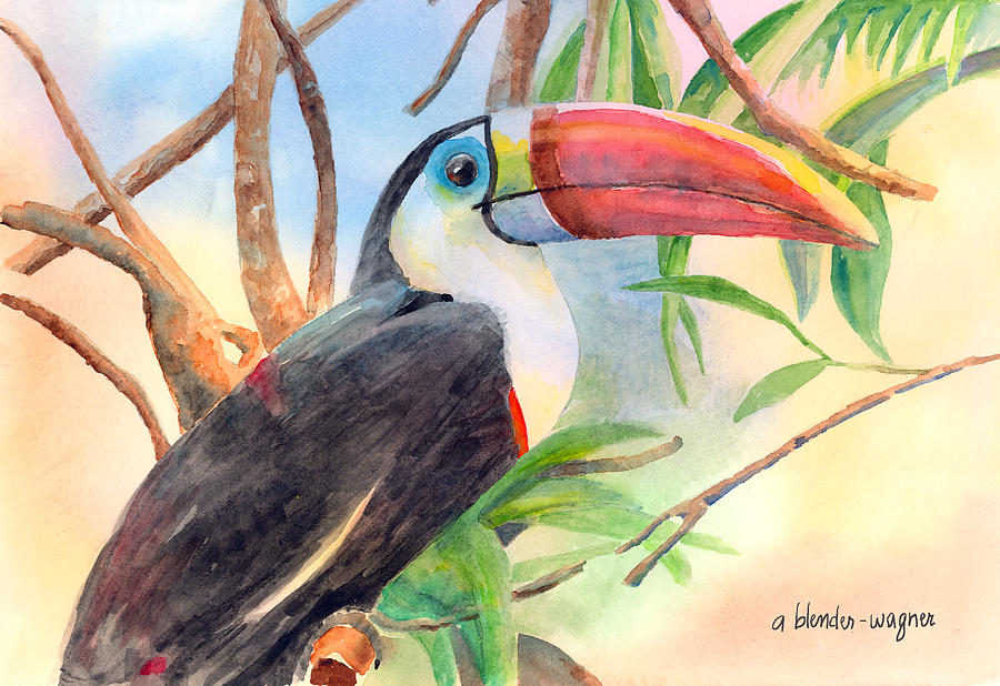 Red-billed Toucan Painting  - Red-billed Toucan Fine Art Print