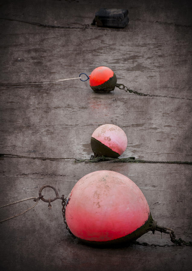Red Buoys  Photograph