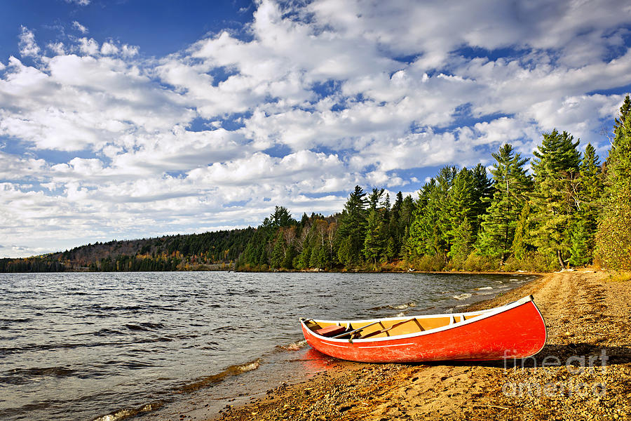 Red Canoe On Lake Shore Photograph  - Red Canoe On Lake Shore Fine Art Print