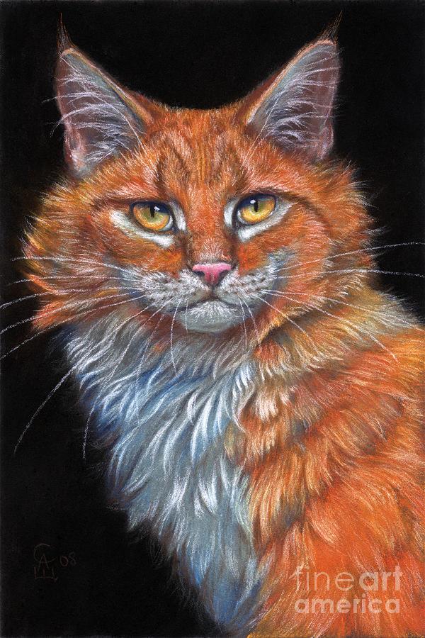 Red Cat Pastel