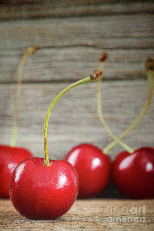 Red Cherries On Barn Wood Photograph