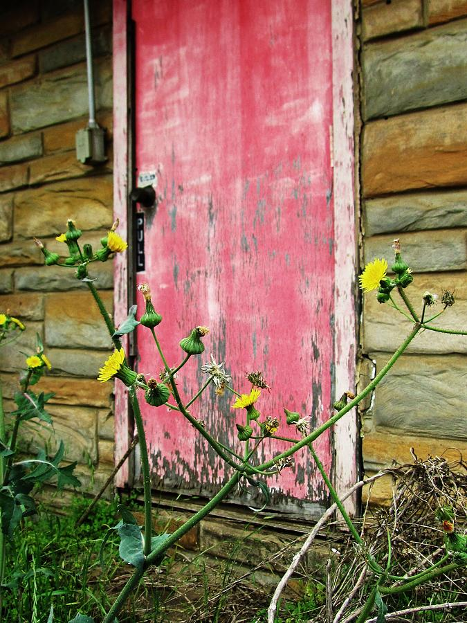 Red Door And Yellow Flowers Photograph