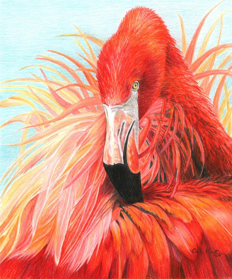 Red Flamingo Painting  - Red Flamingo Fine Art Print