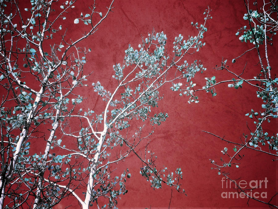 Red Glory Photograph  - Red Glory Fine Art Print