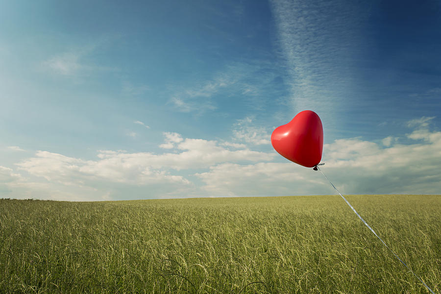 Red Heart Balloon, Blue Sky And Fields Photograph