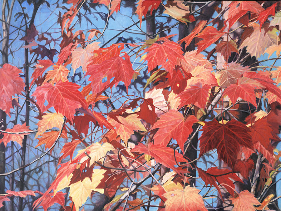 Red Maples Painting  - Red Maples Fine Art Print