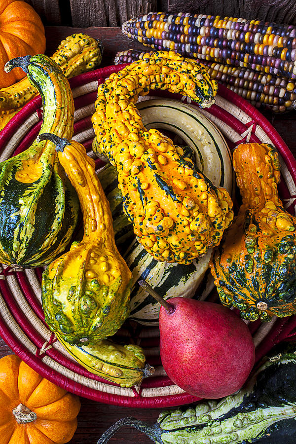 Red Pear And Gourds Photograph