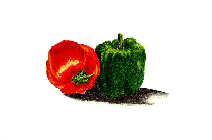 Red Pepper And Green Pepper Painting  - Red Pepper And Green Pepper Fine Art Print