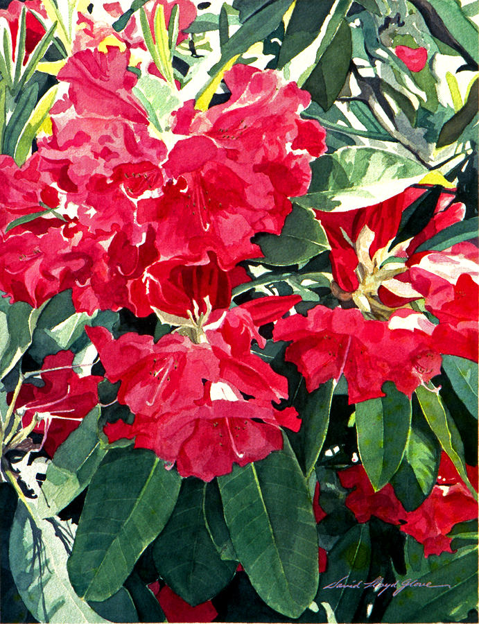 Red Rhododendrons Of Dundarave Painting  - Red Rhododendrons Of Dundarave Fine Art Print
