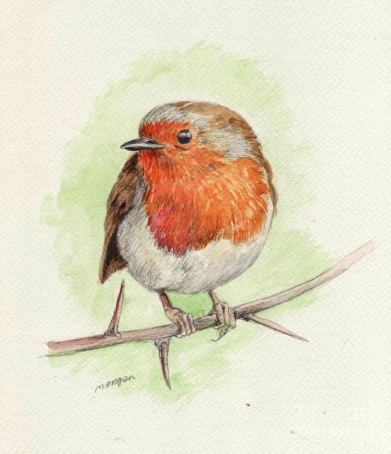 red robin  printable