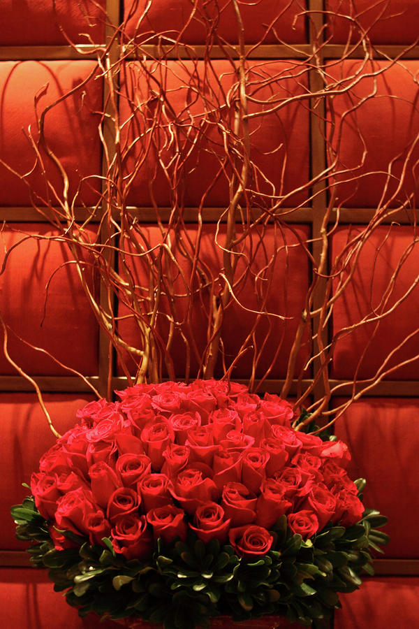 Red Rose Display Close Up Photograph