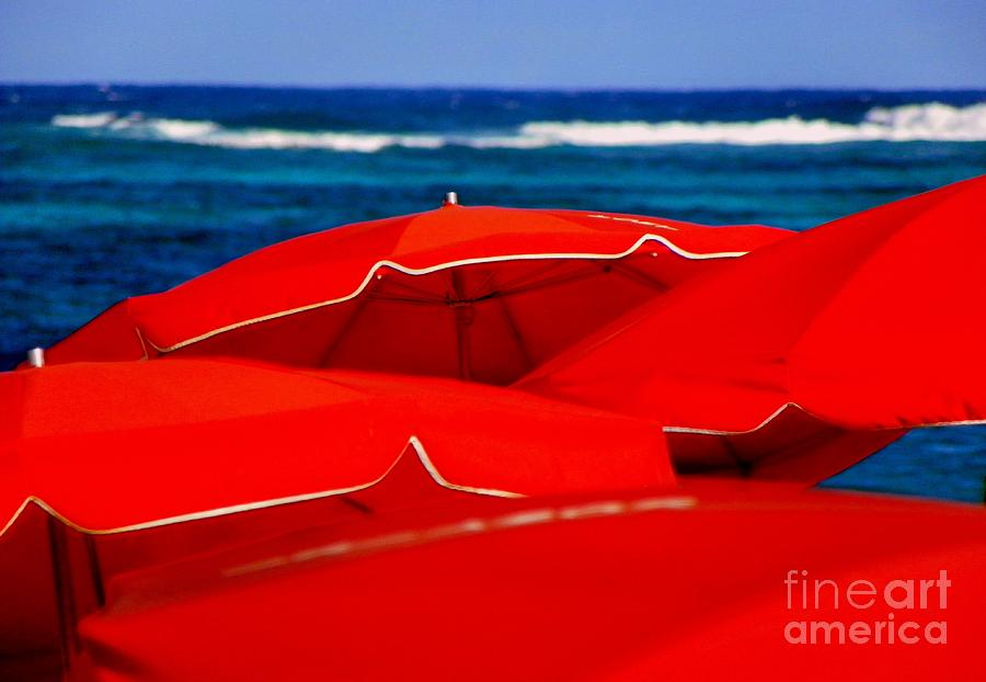 Red Umbrellas  Photograph  - Red Umbrellas  Fine Art Print
