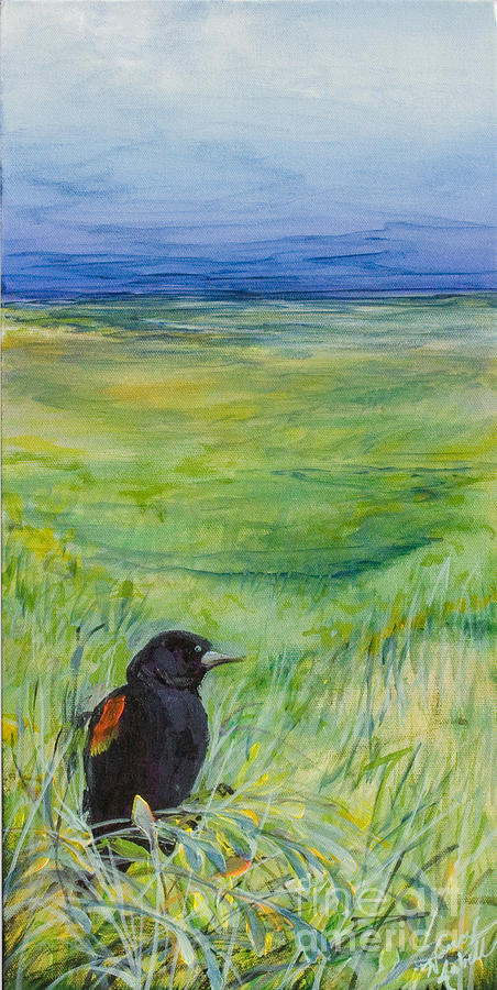 Redwing Blackbird Painting
